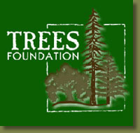 Trees Foundation Logo